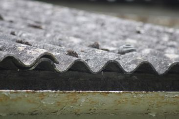 Asbestos cement roof profile Courtesy of M4 Property Solutions.jpg